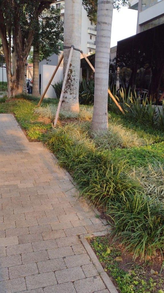 jardim exteno