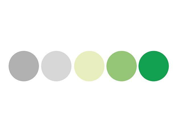 Paleta de cores identidade visual