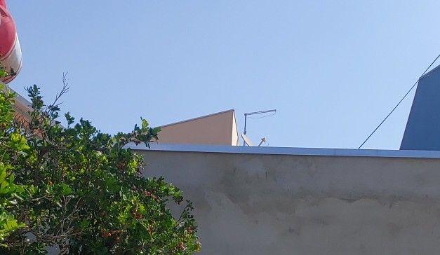 antena digital para tvs