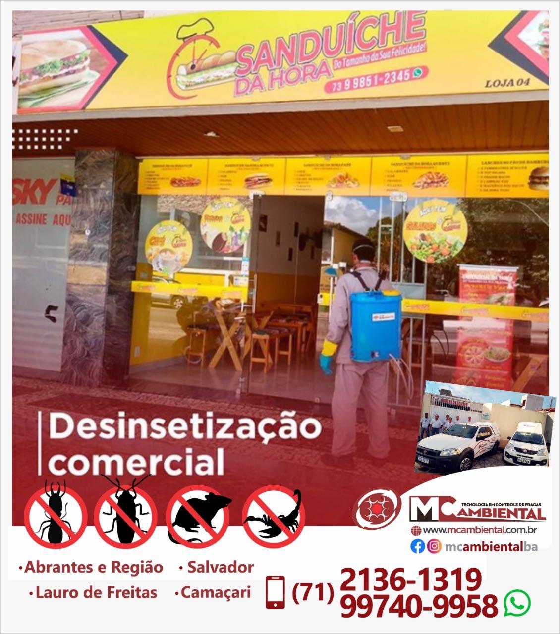 Desinsetização - Estabelecimentos Comerciais