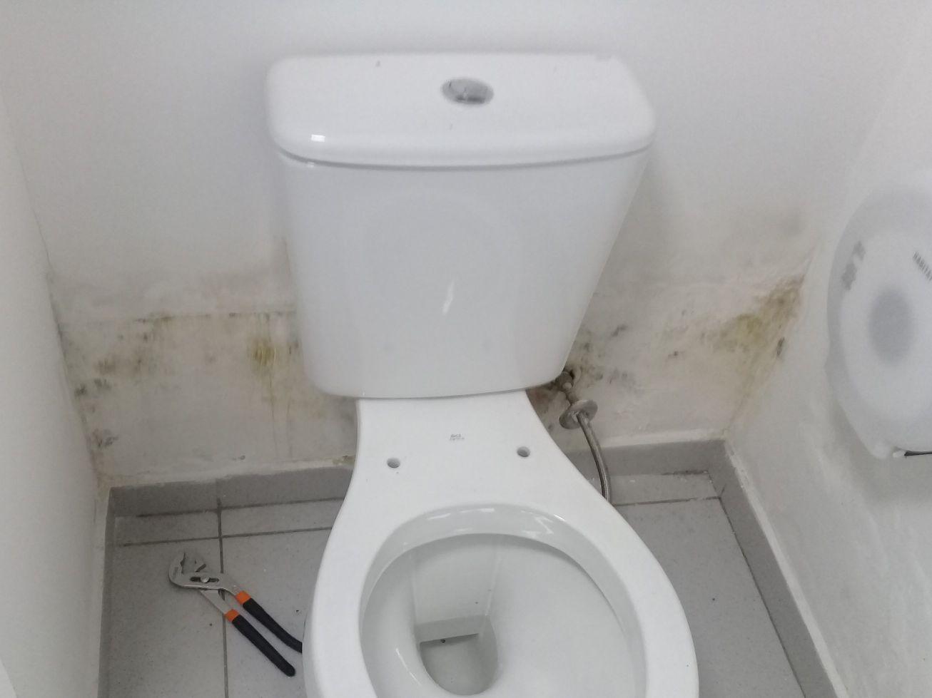 infiltração na parede do banheiro.