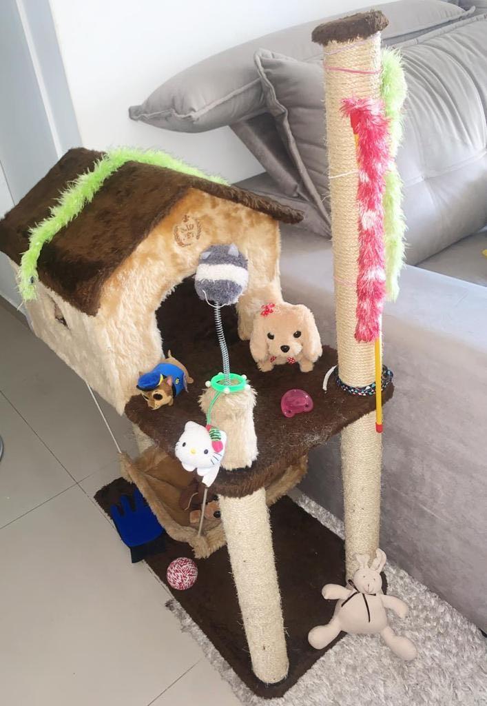 Casinha com brinquedos, arranhadores e redinha