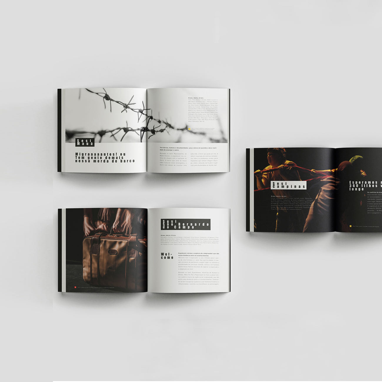 Projeto gráfico e diagramação editorial