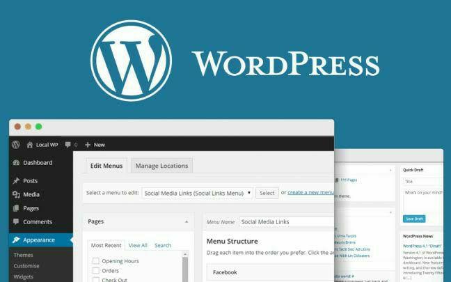 Landing pages, Blogs, lojas virtuais, portifólios