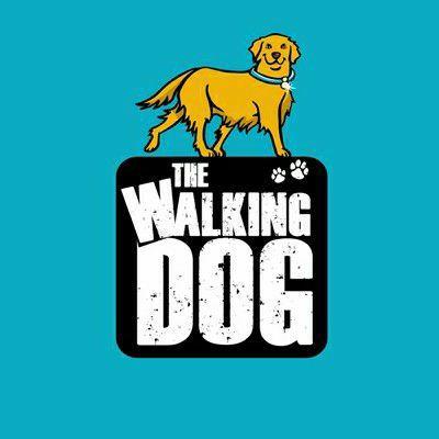 O cão que faz sua caminhada diária é mais saudável