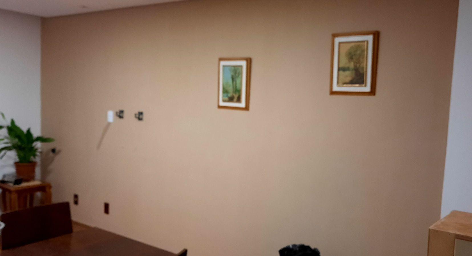 pintura de parede novo tom