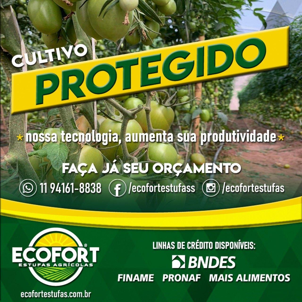 Post Rede Social EcoFort