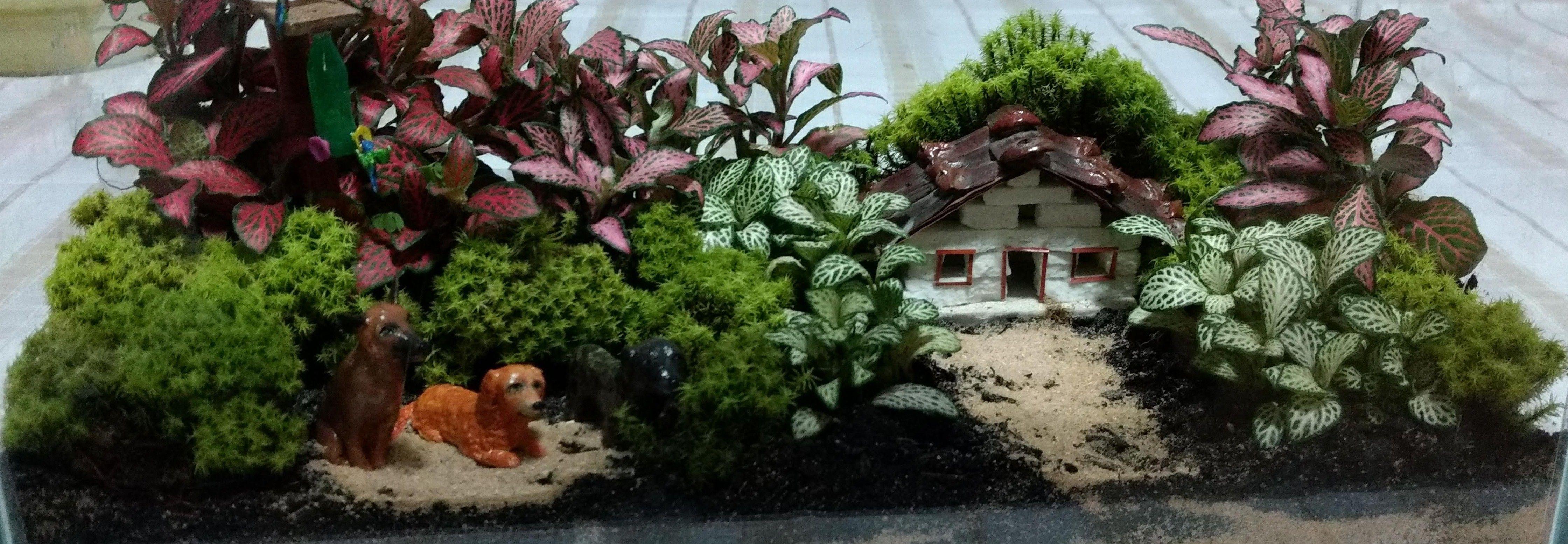 Confecção de terrários e mini jardins