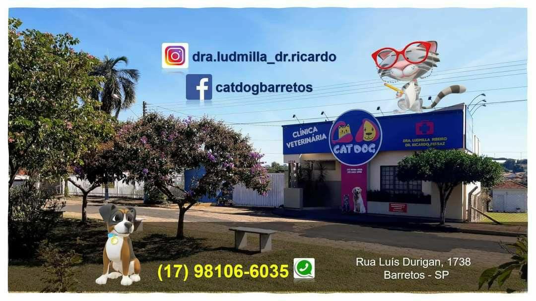 Clínica Veterinária Dia em Barretos - SP