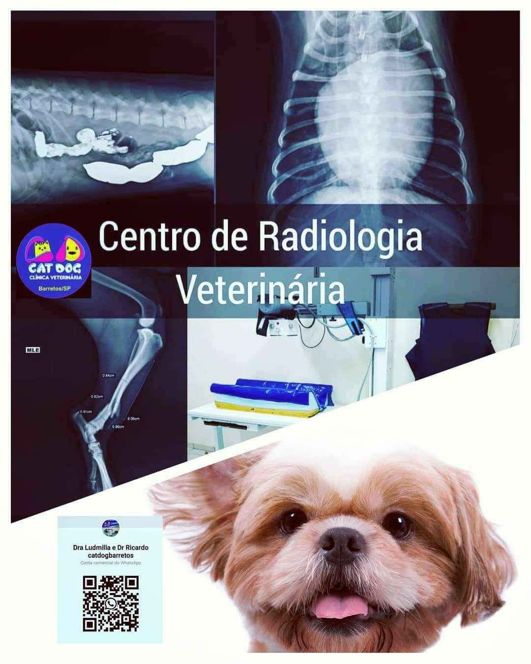 Raio-X Veterinário