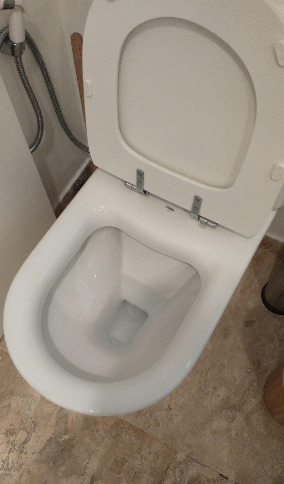 desentupimentos de sanitários.